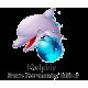 Dolphin Installation